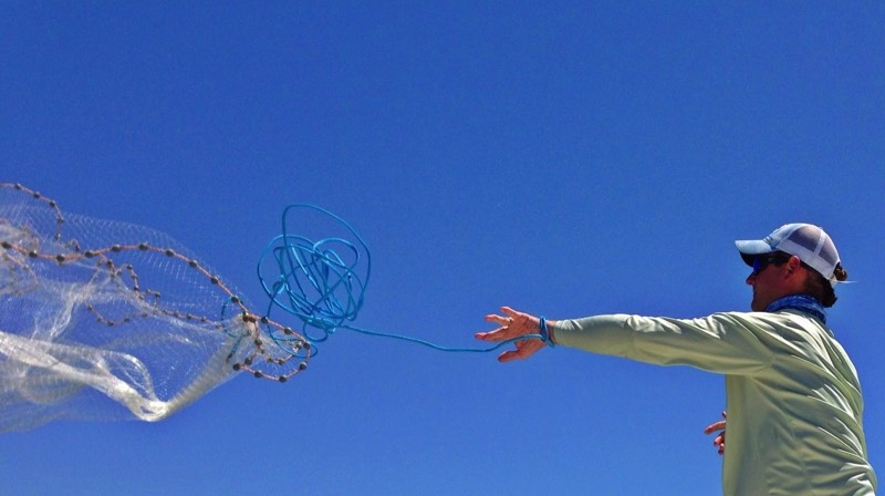 Captain Blair throws a castnet for bait fish
